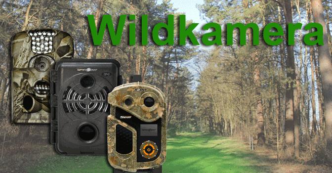 Wildkamera – der unsichtbaren Jagdhelfer