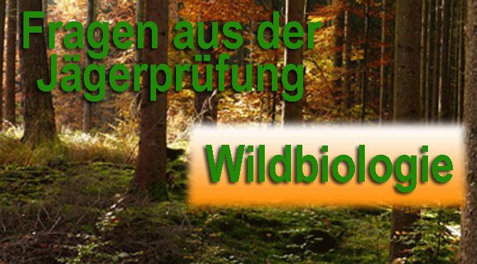 Jagdprüfung Wildbiologie