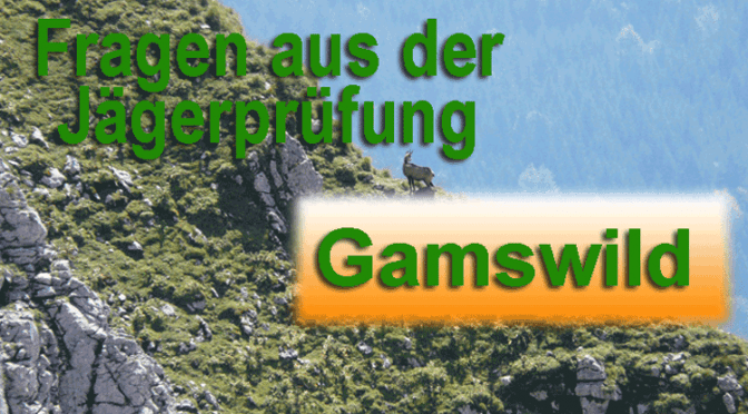 Jagdprüfung Gamswild /Wildbiologie