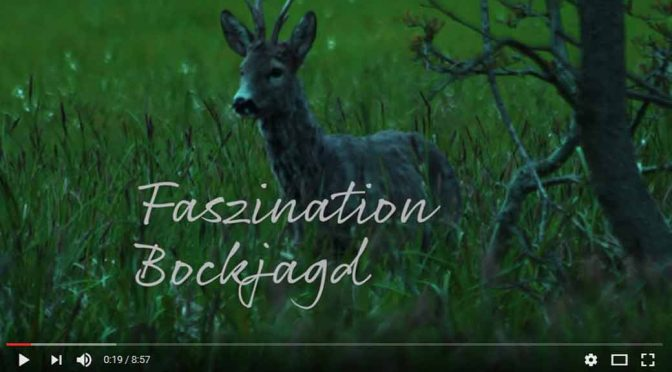Faszination Bockjagd | Ein Video von Frankonia